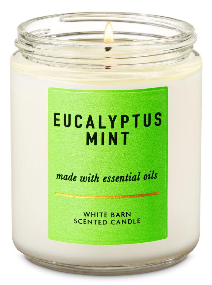 Eucalyptus Mint fragranza Single Wick Candle