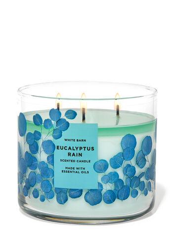 Eucalyptus Rain fragranza Candela a 3 stoppini