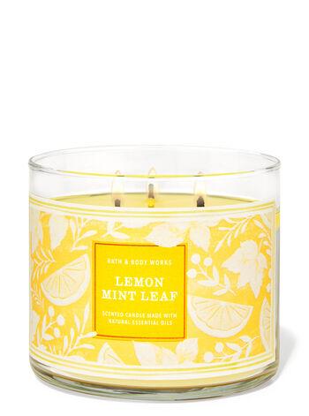 Lemon Mint Leaf fragranza Candela a 3 stoppini