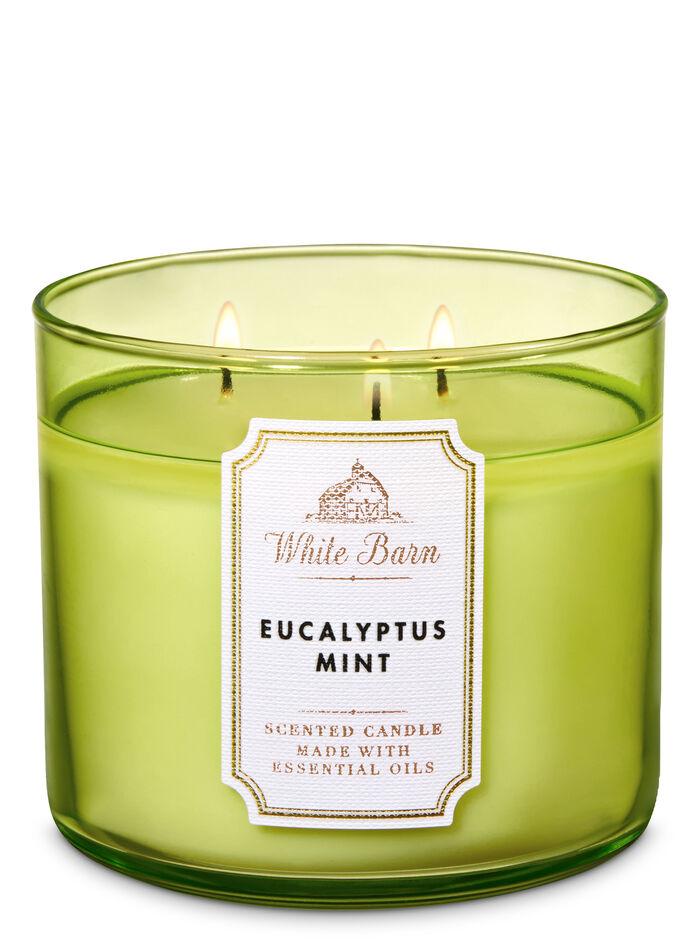 Eucalyptus Mint fragranza 3-Wick Candle