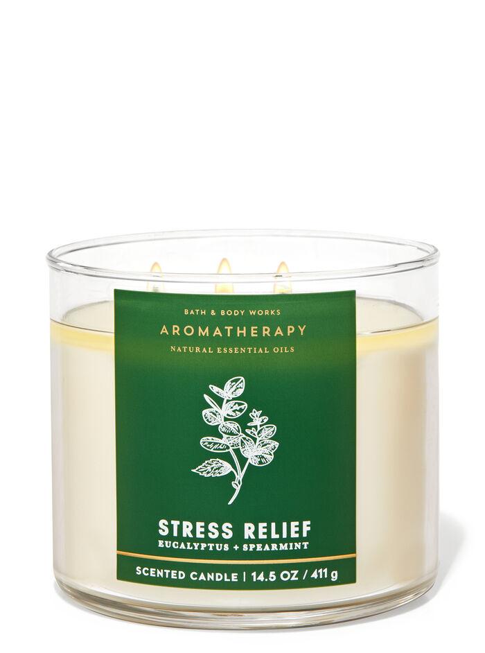 Eucalyptus Spearmint fragranza 3-Wick Candle