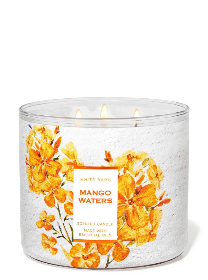Mango Waters fragranza Candela a 3 stoppini