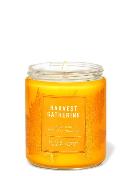 Harvest Gathering fragranza Candela a 1 stoppino